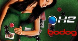 Bodog e H2 Club