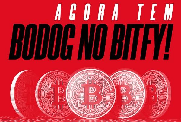 Parceria Bodog e Bitfy